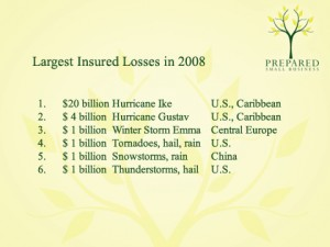 Largest Insured Losses in 2008